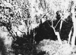 Grottasantacandida