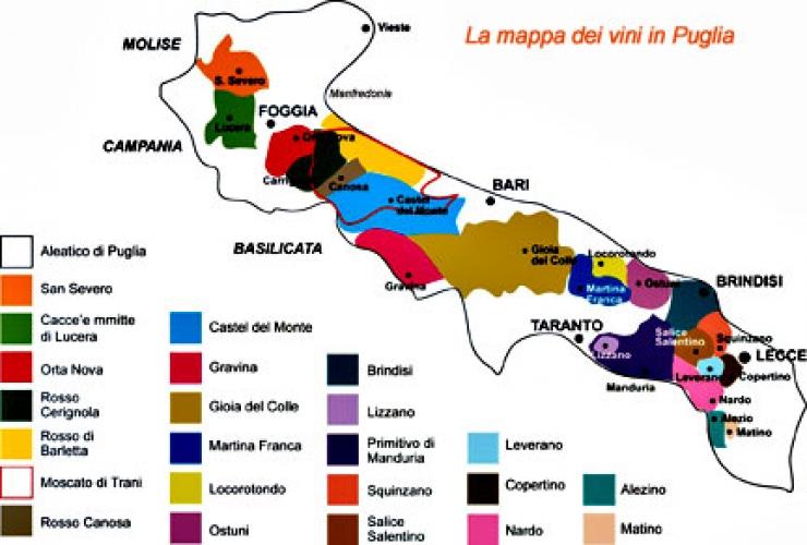 Cartina Vini Puglia.Origini Del Ceppo Primativo E Dello Zinfandel Gioiadelcolle Info Il Portale Di Gioia Del Colle